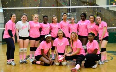 Can You Dig Pink?