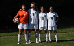 How Team Sports Bridge the Domestic-International Divide