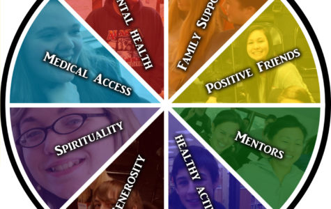 Peer Counselors at SSFS: Who We Are and What We Do