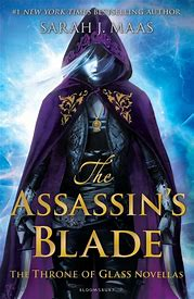 Book Review: The Assassin