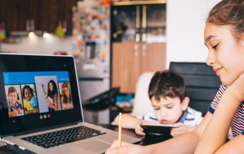 Why Online Learning Might Not Be The Way of the Future